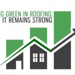 Going Green in Roofing: Safe Energy