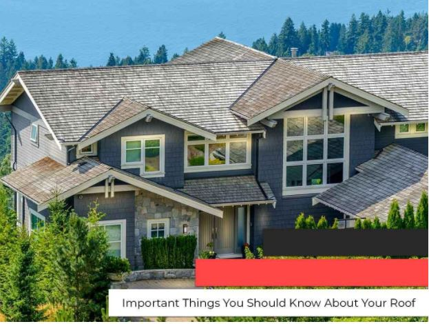 Important Things You Should Know About Your Roof